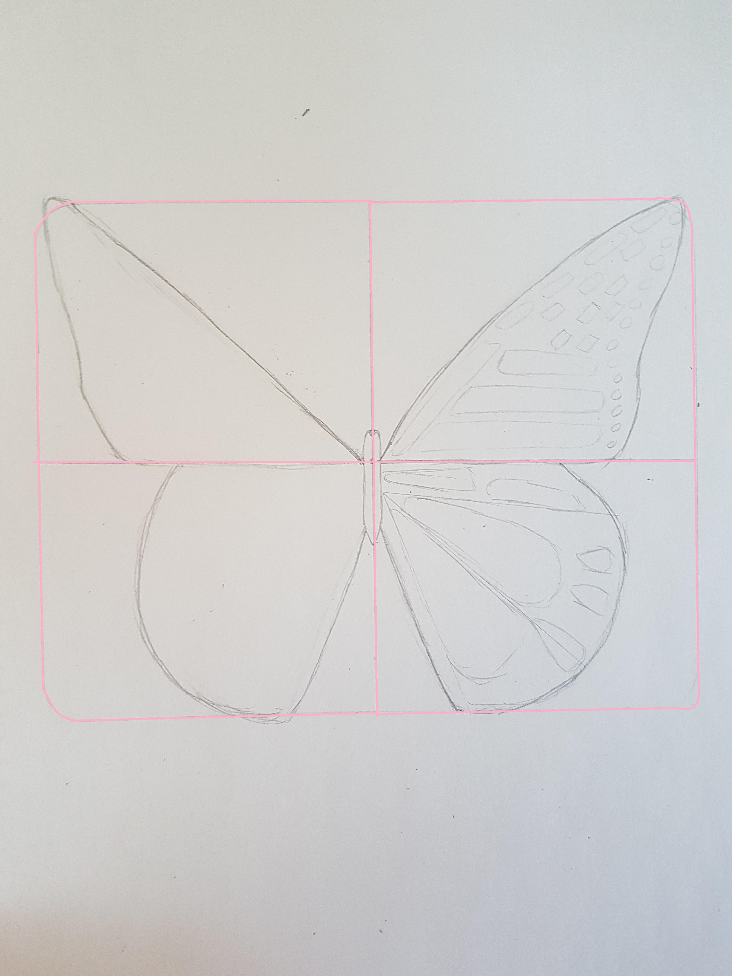 Populair Stap Voor Stap Een Vlinder Leren Tekenen - Nikki Style #XV76
